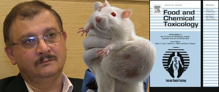 http://joseppamies.files.wordpress.com/2014/12/cbb2e-seralini-tumour-rat-food-and-chemical-toxicology-710px.jpg