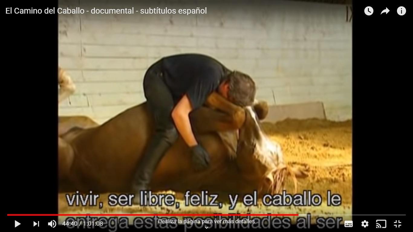 """VER: """"El camino del Caballo"""". DOCUMENTAL"""
